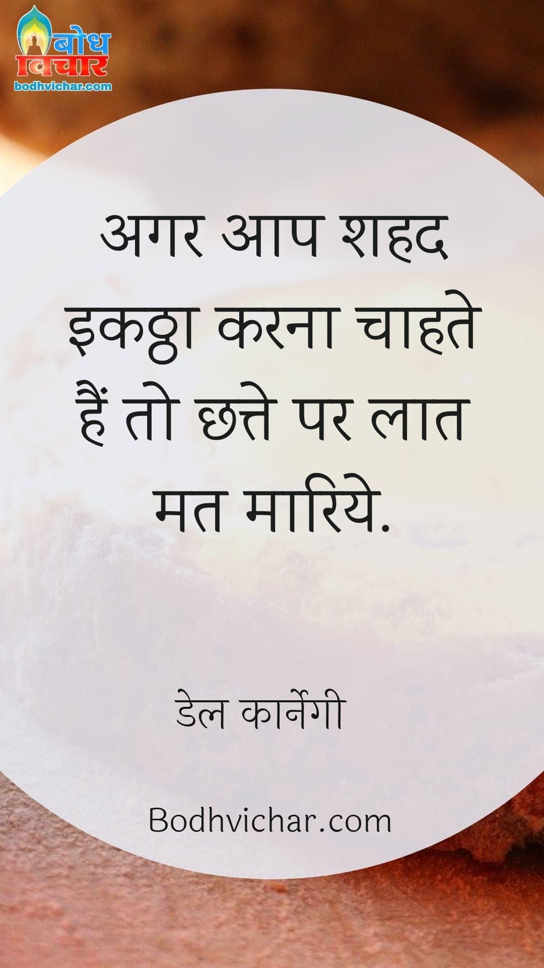 अगर आप शहद इकठ्ठा करना चाहते हैं तो छत्ते पर लात मत मारिये. : Agar aap shahad ikattha karna chahte hain to chhatte par laat mat maariye. - डेल कार्नेगी