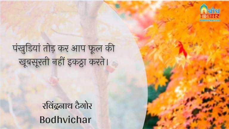 पंखुडियां तोड़ कर आप फूल की खूबसूरती नहीं इकठ्ठा करते। : Pankhudiyaan todkar aap phool ki khubsoorti ko ikattha nahi kar sakte. - रवीन्द्रनाथ टैगोर